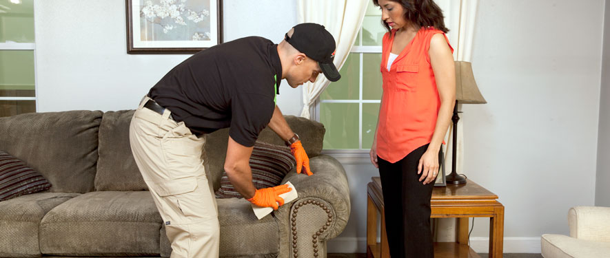 Frederick, MD carpet upholstery cleaning