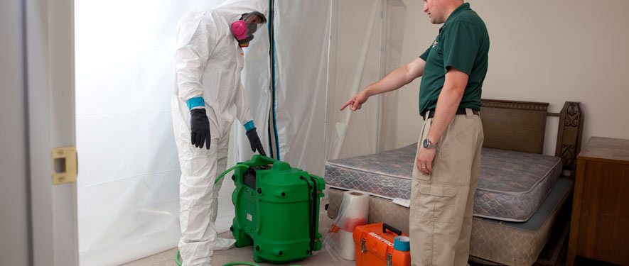 Frederick, MD mold removal process